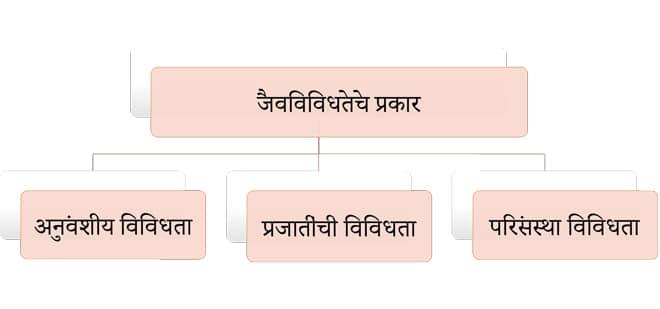 Types-of-biodiversity